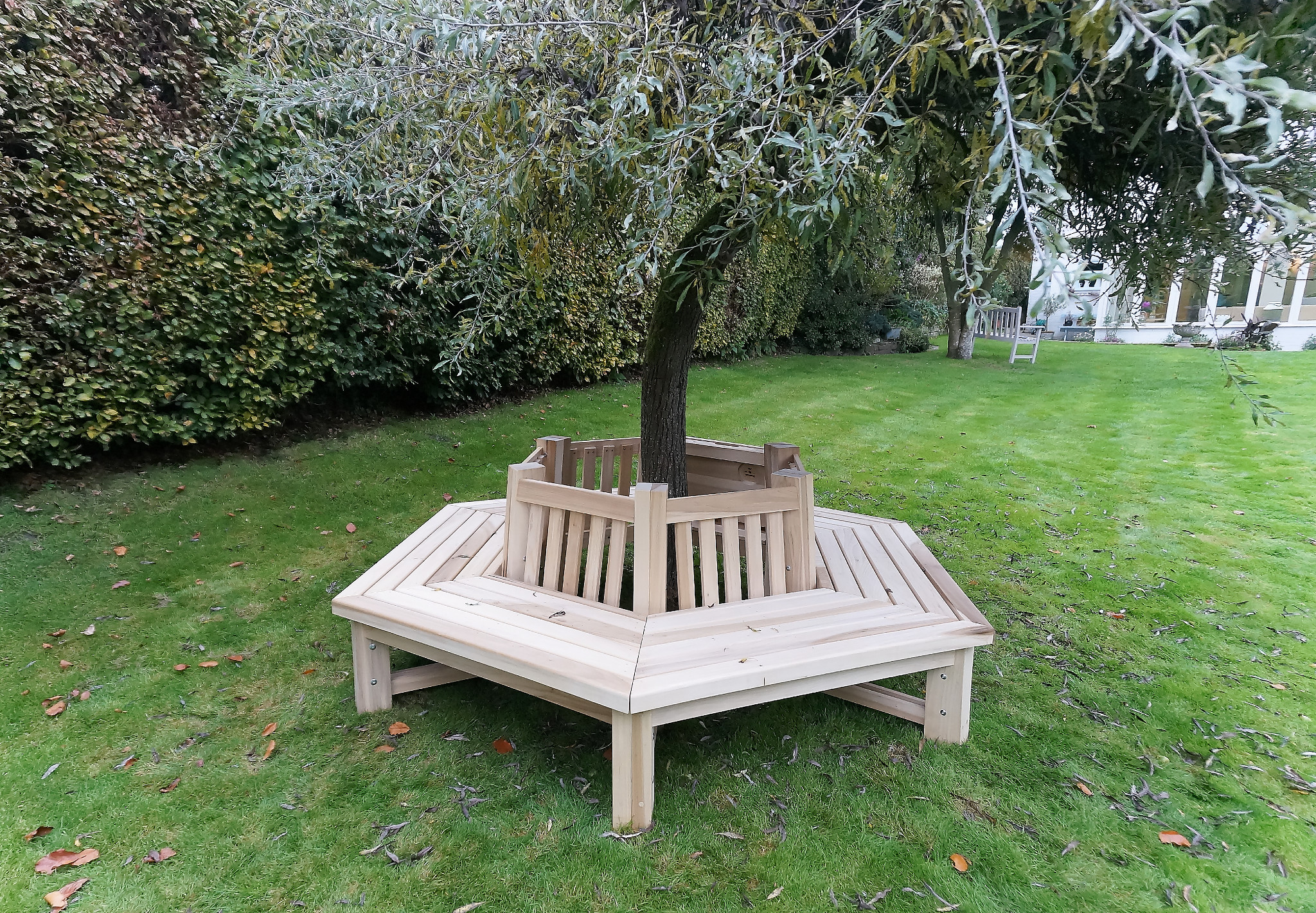 Tree bench in garden location